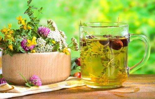 Травяные чаи для любого дня – какая польза от них